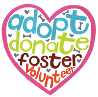 Adopt, Donate, Foster and Volunteer